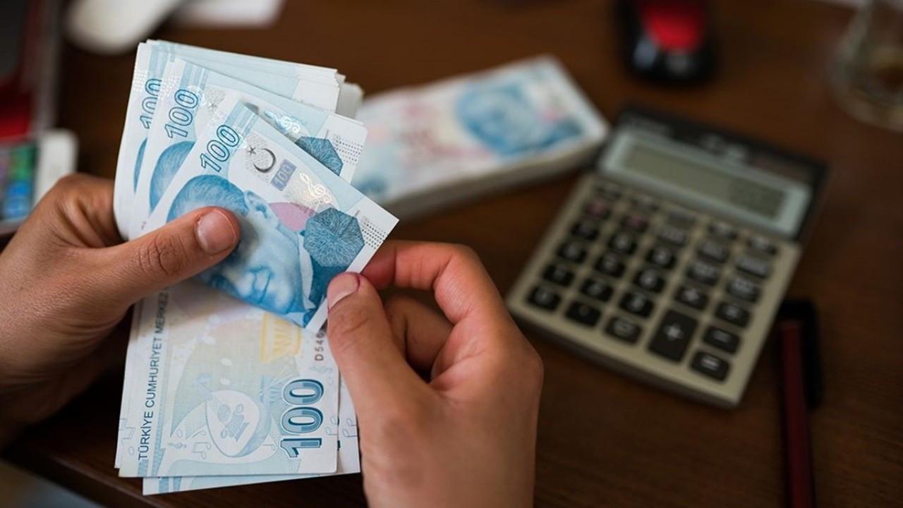 Ekonomistlere göre OVP fazla iyimser