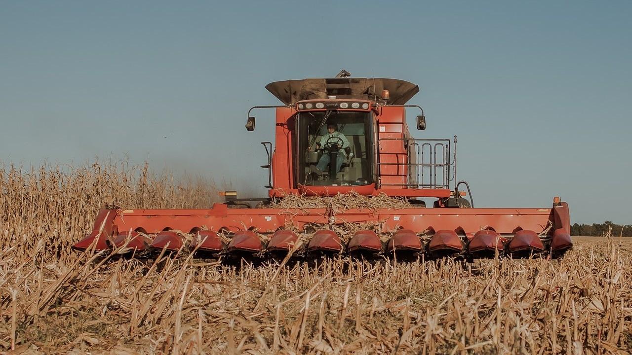 Tarım ÜFE, yıllık bazda yüzde 24,69 arttı