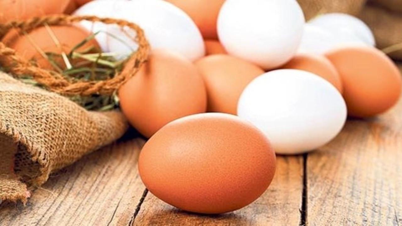 Tavuk eti ve yumurtası üretimi temmuzda azaldı