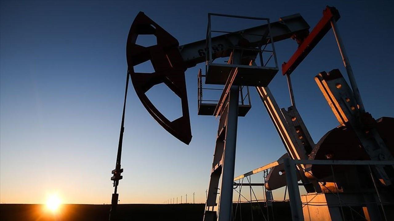 Türkiye'nin petrol ithalatı temmuzda geriledi